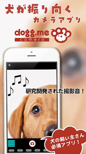 dogg.me camera ドッグミーカメラ 犬専用カメラ