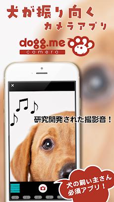 dogg.me camera(ドッグミーカメラ)犬専用カメラのおすすめ画像1