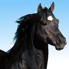 RaceApp icon