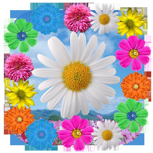 春天的花朵动态壁纸 個人化 App LOGO-APP試玩