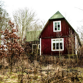 Abandoned house by Matizki Blixten - Buildings & Architecture Decaying & Abandoned ( sweden, surrealistic colors, autumn, abandoned house, abandoned )