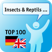 100 Insects, Reptils Keywords
