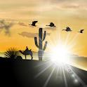Desert LWP