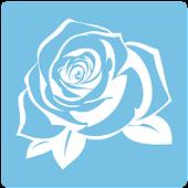 Roses xAPI Demo