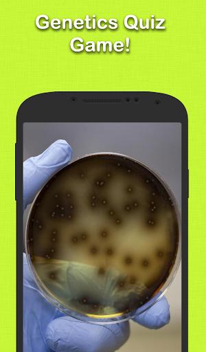 無料益智Appの遺伝的細事|記事Game