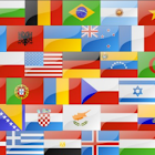 Flags icon
