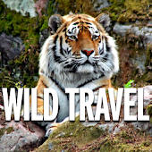 Wild Travel Magazine