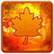 Autumn Leaves Live Wallpaper!