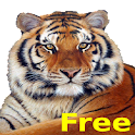 Animal Library icon