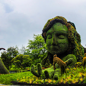 Mother Nature by Adrian Kurbegovic - City,  Street & Park  City Parks ( mother nature,  )