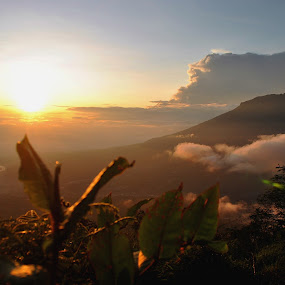 this sunrise from Sindoro by Christian Nugroho - Landscapes Mountains & Hills