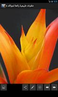 Screenshot of صور طبيعية رائعة لجوالك  2