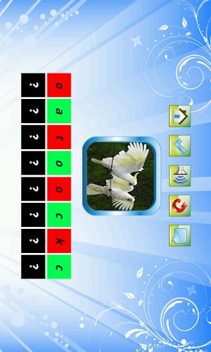 【免費教育App】Bird For Kid-APP點子