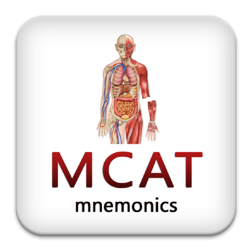 anatomy mnemonics blocks 1 4 x Study 145 mnemonics flashcards from aj s on studyblue.