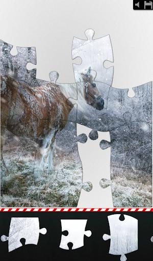 Jigsaw - Animal Seasons