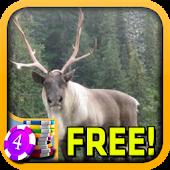 3D Caribou Slots - Free