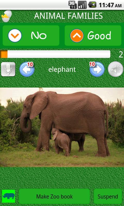 Let's make Zoo Book !- screenshot