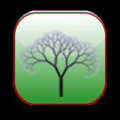 Arbor - TOEIC