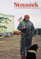 Werner Herzog film collection: Stroszek