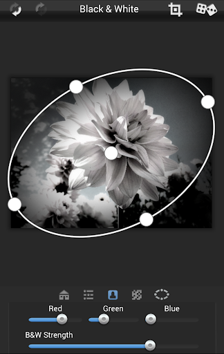 Dramatic Black & White v2.33