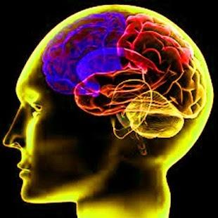 「注意力不集中專案」 --腦波音樂專注你的腦!