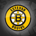 Estevan Bruins Official App icon