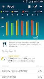 Fitbit Screenshot 3
