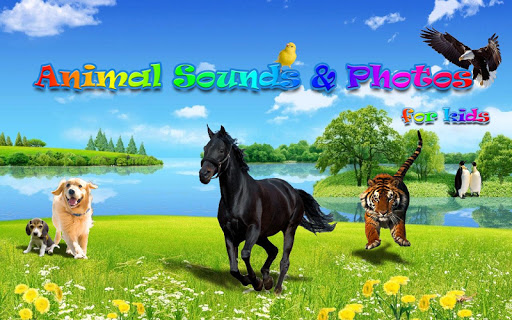Animal Sounds&Photos for Kids 1.5 screenshots 8