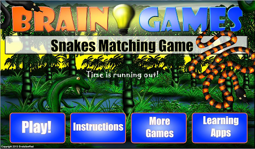 Snakes Matching Game