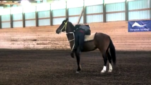 【免費運動App】Hybrid Horsemanship Mobile-APP點子