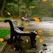 Autumns Park Live Wallpaper