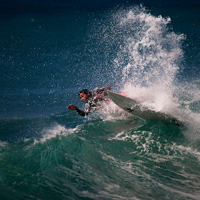 Riding the wave by Austin Lawler - Sports & Fitness Surfing ( water, surfing, surfer, wave, ocean, hawaii,  )