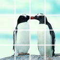 Puzzle Penguin icon