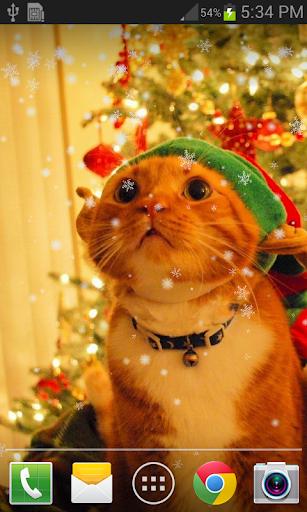 可爱圣诞猫咪动态壁纸 FREE PRO