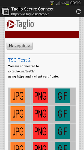 Taglio Secure Browser - Beta