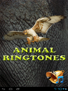 Animal Ringtones and Wallpaper