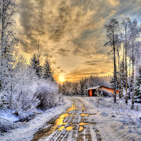 A Winter Sunrise by Skye Ryan-Evans - Landscapes Sunsets & Sunrises ( winter snow, early-morning, canada, horse ranch, sunrise on a horse ranch, country lane, winter sunrise, farm shed, landscape, country road, country scene, scenic photo, dawn, barn, nature photography, rural scene, sunrise, sunrise and snow, farm scene, british columbia,  )