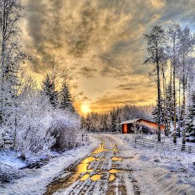 Cariboo Sunrise IV HDR Photo Print.jpg