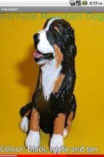 Model Puppy Dog Breeds 2 FREE- screenshot thumbnail