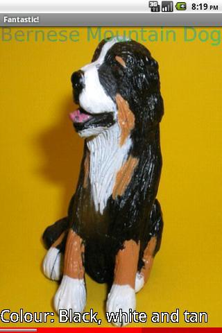 Model Puppy Dog Breeds 2 FREE- screenshot