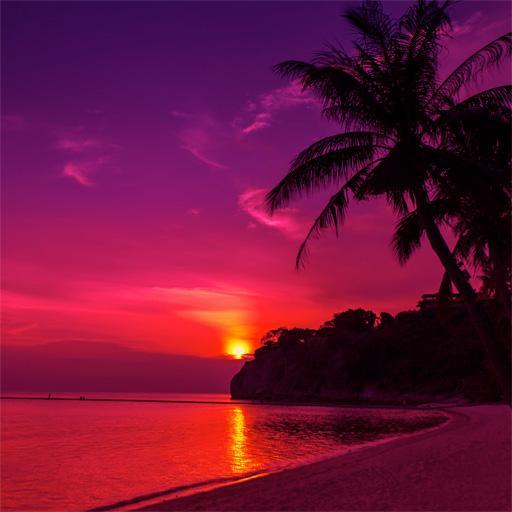 Sunset Nature Wallpapers 娛樂 App LOGO-APP開箱王