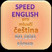 Angličtina pro mluvčí čeština