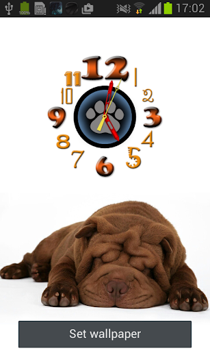 Shar Pei Clock Live Wallpaper