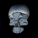 3D Moving Skull Live Wallpaper APK