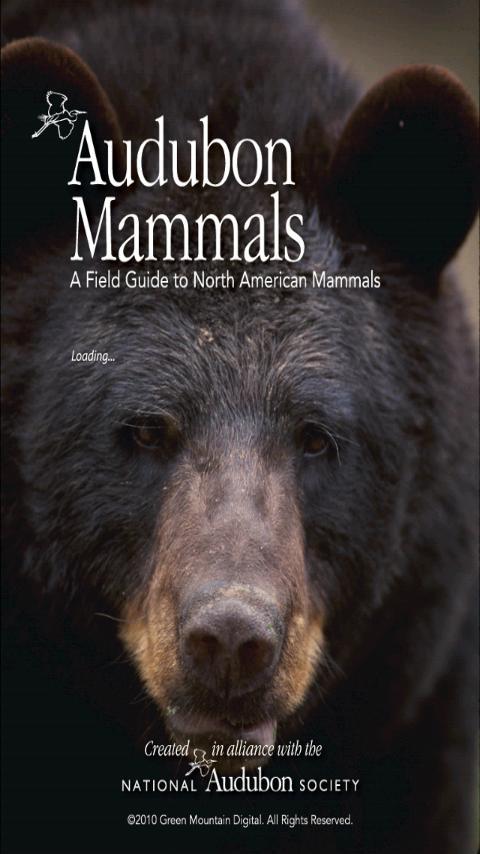 Audubon Mammals - screenshot