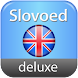 English Explanatory dictionary