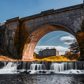 Dalkeith Park by Don Alexander Lumsden - Buildings & Architecture Bridges & Suspended Structures