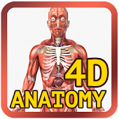 Anatomy Physiology 4D‏