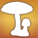 Audubon Mushrooms icon