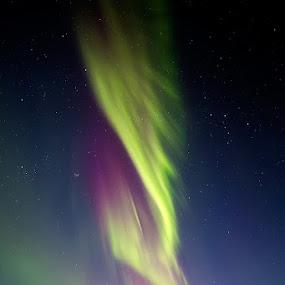 Wrath of Asgard by Bragi Kort - Landscapes Weather ( iceland, magenta, purple, bragikort, ice, green, aurora borealis, northern lights, lake, þingvellir, bkort photography )